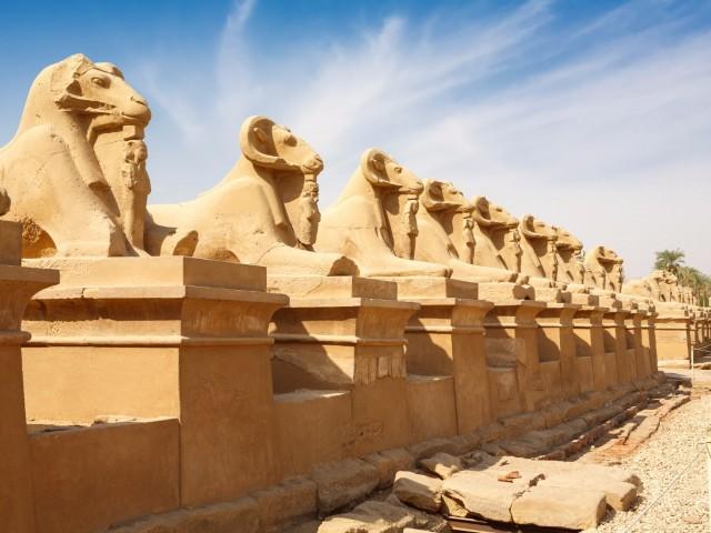 MISIR TURU | THY ile